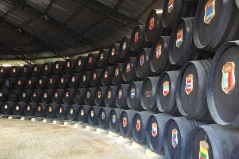 Выдержка вин по технологии сольера