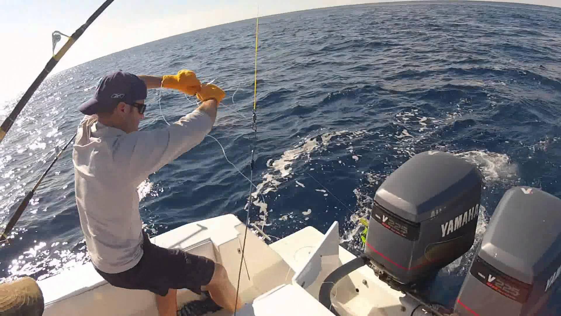 Морская рыбалка (троллинг) в Барселоне